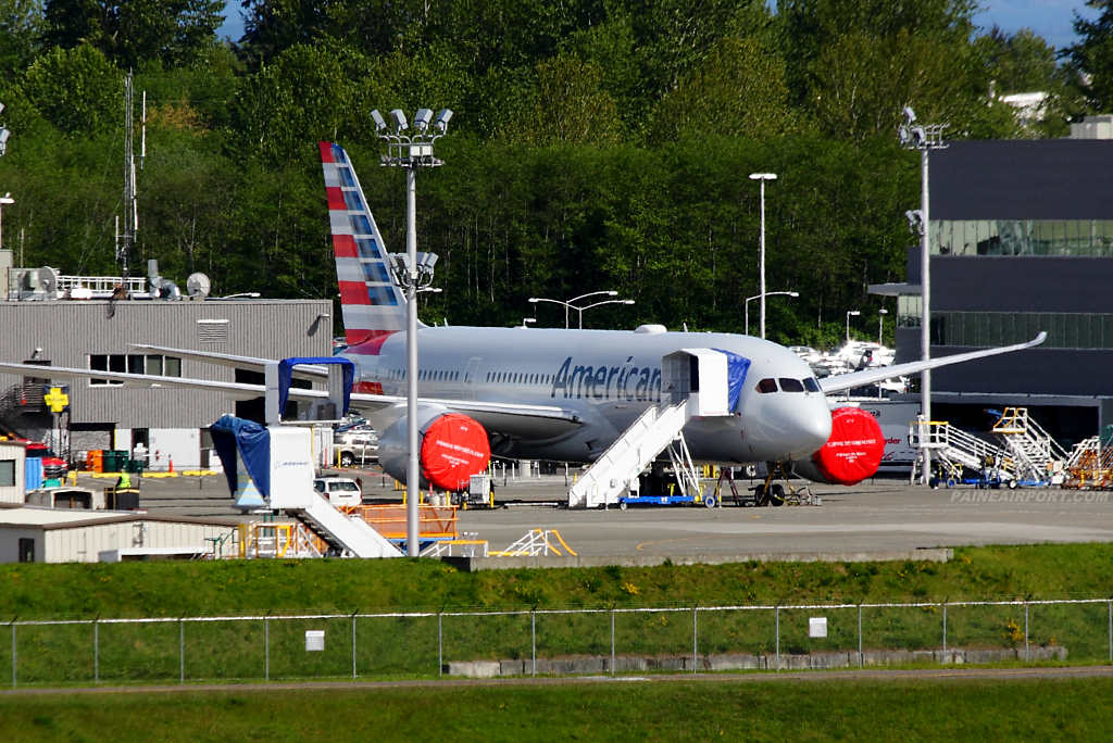 American Airlines 787-8 N803AL at Paine Airport
