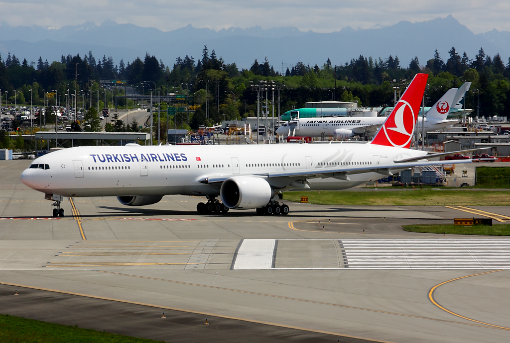 Turkish Airlines 777 TC-LJA at Paine Airport