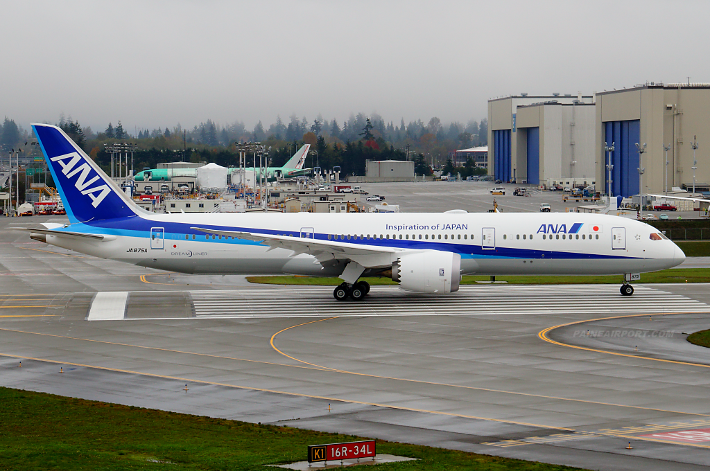 ANA 787-9 JA875A at Paine Airport