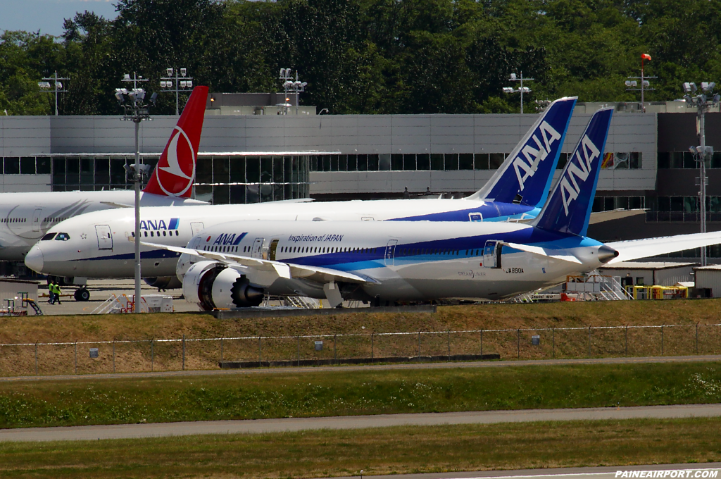 ANA 787-9 JA880A at Paine Airport